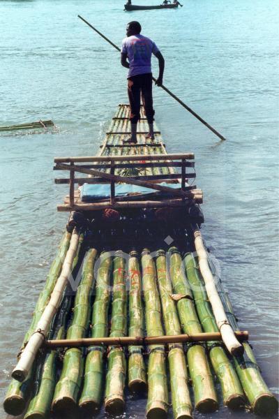 Bambus-Floss