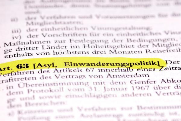 Gesetzestext Art. 63 Asyl, Einwanderungspolitik