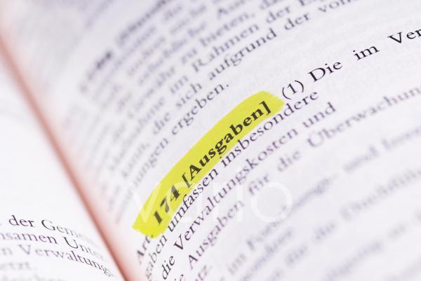 Gesetzestext Art. 174 Ausgaben