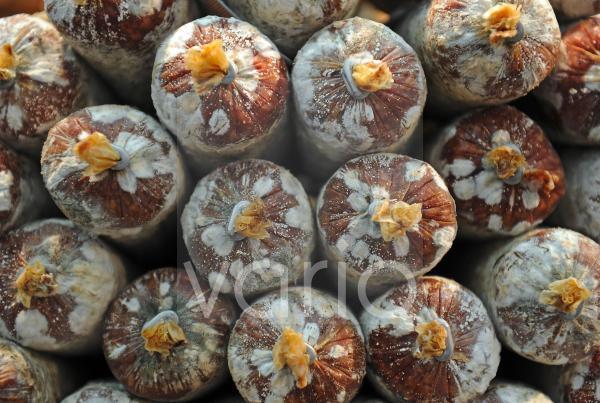 ein Stapel Edelsalami bewachsen mit Schimmelpilzen