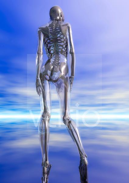 Glaserner weiblicher Körper