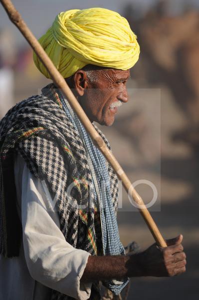 Camel shepherd with yellow turban