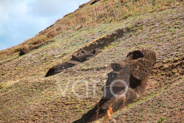 Large moai statues buried along the hillside at Ranu Raraku on Easter Island