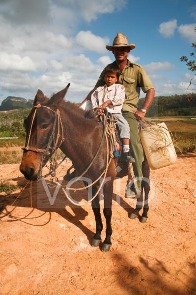 Tabak-Bauer auf Pferd, in Vinales, Kuba, Große Antillen, Karibik