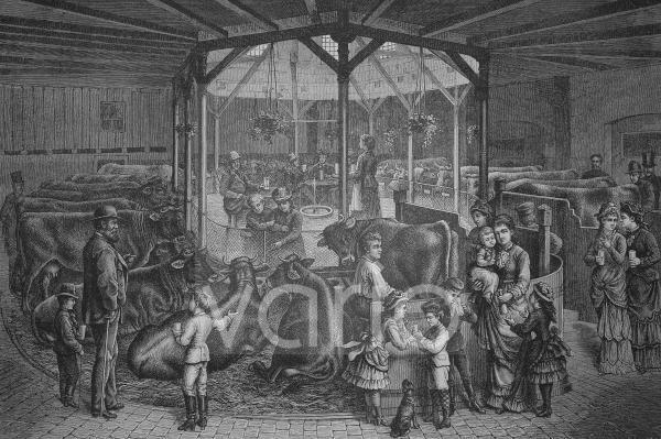 Zentralstelle der Wille'schen Milchkuranstalt in Dresden, Sachsen, Deutschland, historischer Stich, 1883