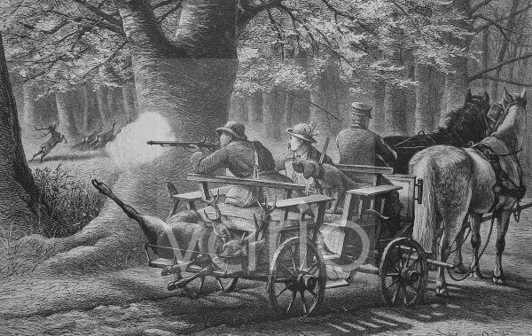 Pirschfahrt, historischer Stich, 1883