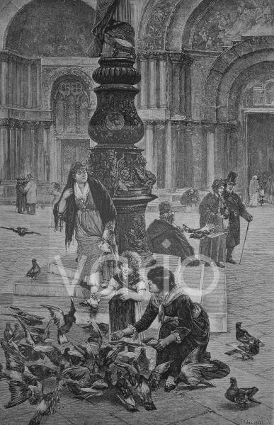 Taubenfütterung auf dem Markusplatz in Venedig, Italien, historischer Stich, 1883