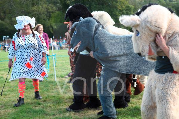 Pantomime horse race with Dame as starter, Widecombe Fair, Dartmoor, Devon, England, United Kingdom, Europe