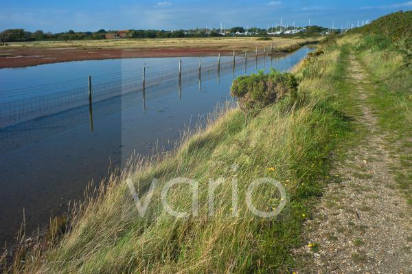 View of salt marshes from the Solent Way footpath, New Forest National Park, Lymington, Hampshire, England, United Kingdom, Europe