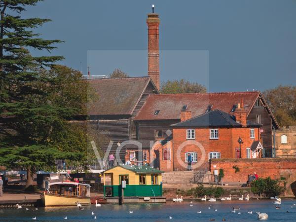 River Avon, Stratford-upon-Avon, Warwickshire, England, United Kingdom, Europe