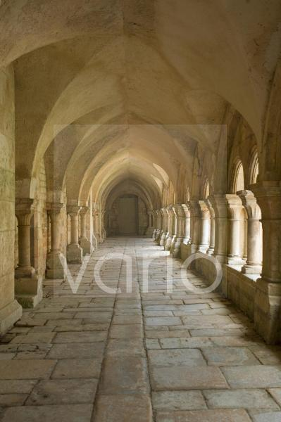 Cloisters, Fontenay Abbey, UNESCO World Heritage Site, Burgundy, France, Europe