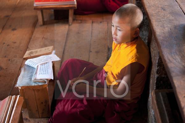 Young Buddhist monk studying scripts in class at Chimi Lhakhang Temple, Punakha Valley, Bhutan, Asia
