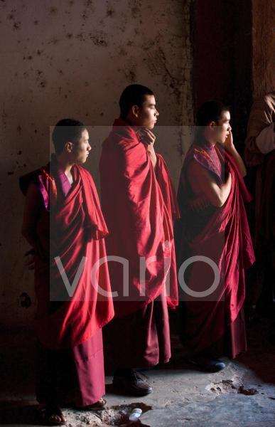 Young Buddhist monks watching dancing at the Wangdue Phodrang Tsechu, Wandgue Phodrang Dzong, Wangdue Phodrang (Wangdi), Bhutan, Asia