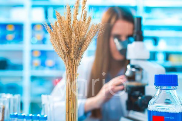 Female nutritionist using microscope