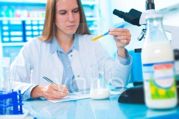 Scientist testing milk sample