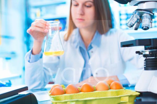 Scientist testing egg yolk in a lab
