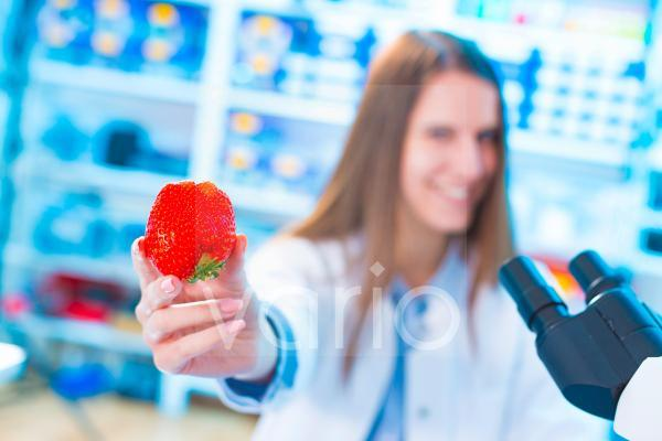 Scientist holding strawberry in a lab
