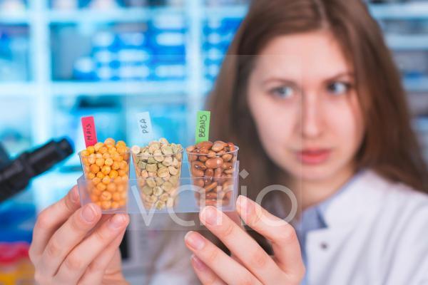 Lab technician holding legumes