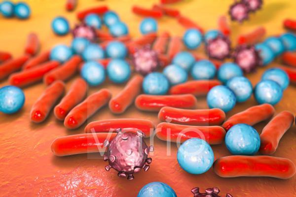 Various microbes, illustration
