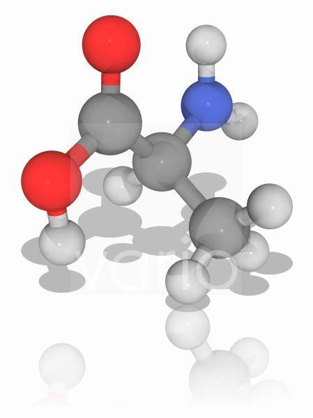 Alanine organic compound molecule