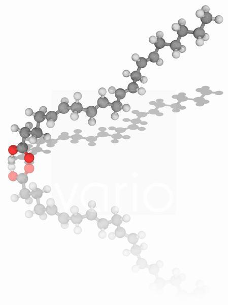 Arachidonic acid organic compound molecule