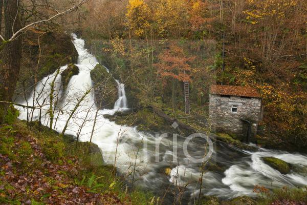 Colwith Force waterfall on the River Brathay in woodland in the English Lake District National Park.