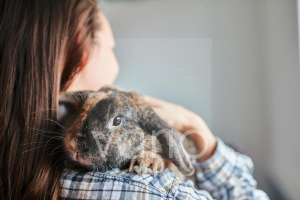 Portrait of pet house rabbit on shoulder of woman