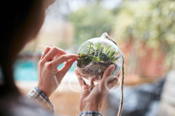Close up of woman's hands caring for plants within glass terrarium