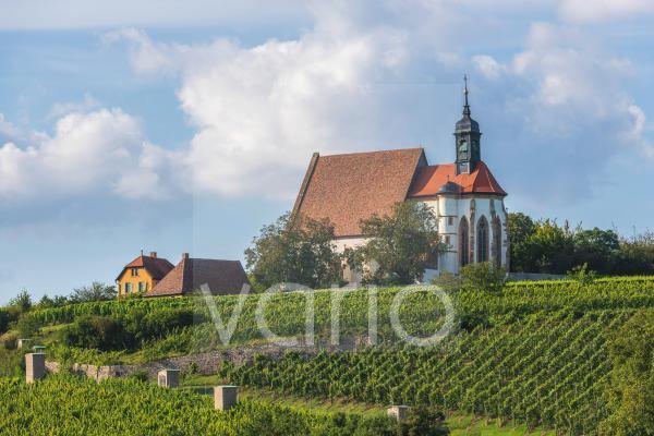 Spätgotische Wallfahrtskirche Maria im Weingarten, Volkach, Mainfranken, Unterfranken, Franken, Bayern, Deutschland, Europa