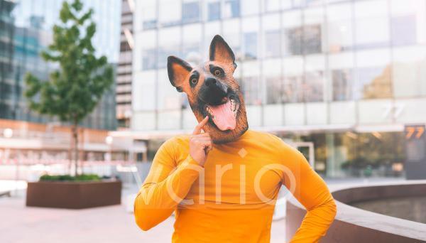 Man wearing dog mask in city