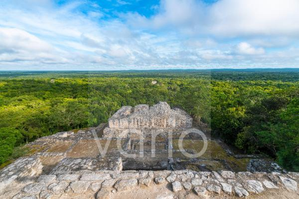 Mexico, Campeche, Green rainforest seen from ancient Maya ruins of Calakmul