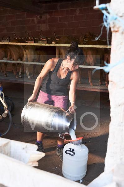 Female farmer pouring milk in container at farm