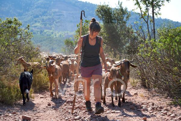 Female farmer hiking with goats on dirt road