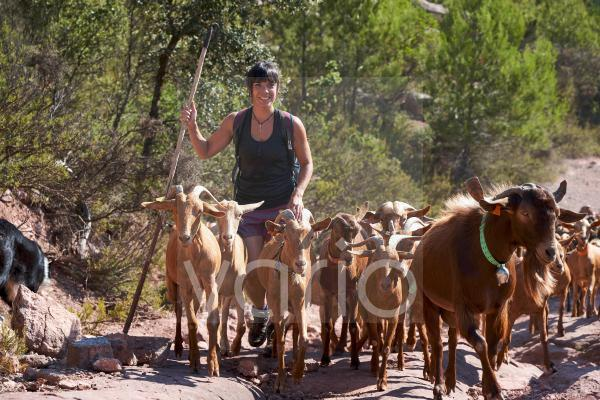 Smiling female shepherd hiking with goats on sunny day