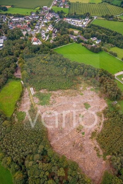 Kahle Fläche eines gerodeten Waldbestandes in Breckerfeld im Bundesland Nordrhein-Westfalen, Deutschland