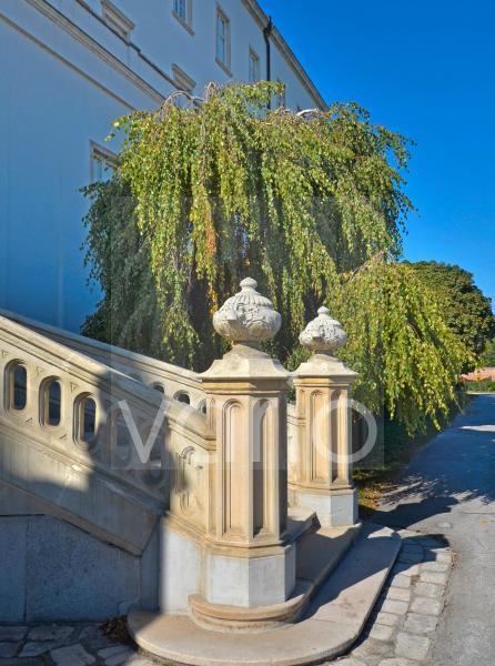 Die Burg von Wiener Neustadt - Treppendetail