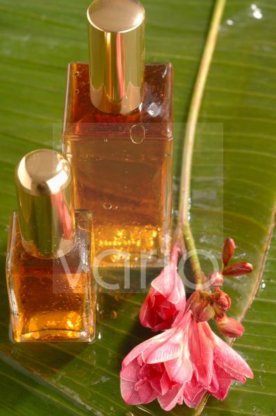 Flakons mit Fresien-Blüten