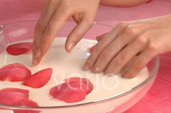 Handbad mit Rosenblütenblättern