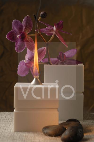 Öllampe und Orchideenblüten