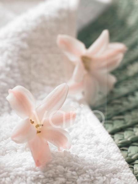 Blütendekoration für das Badezimmer