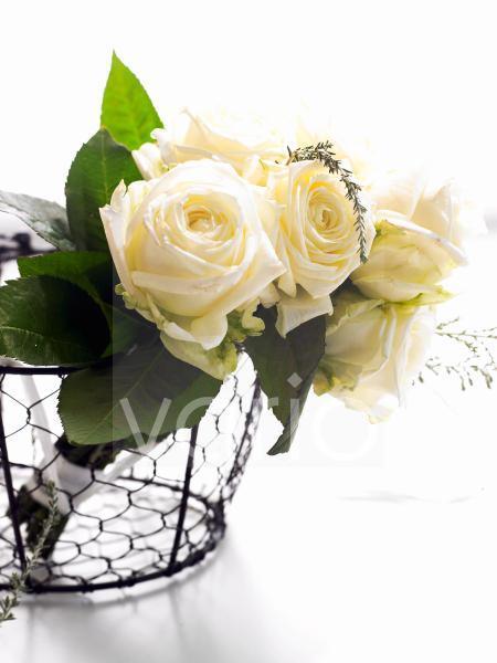 Weiße Rosen im Korb