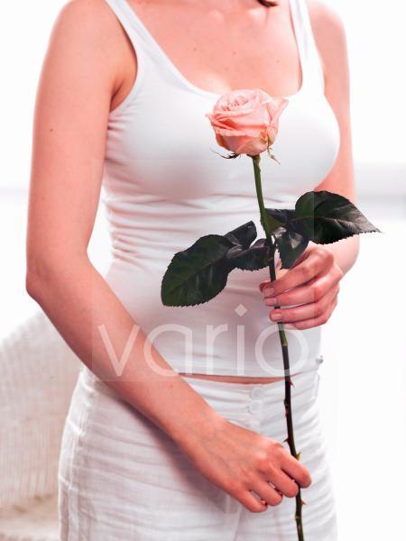 Rosa Rose - mit Modell