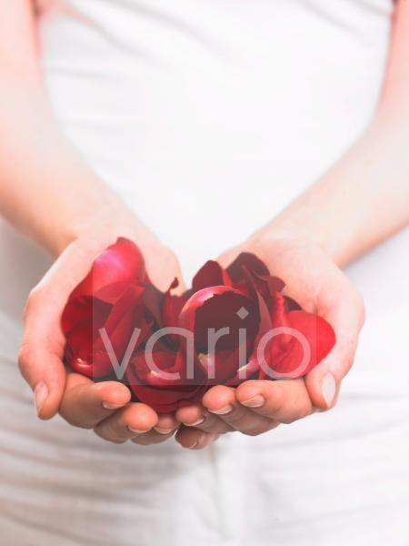 Eine Handvoll Rosenblätter